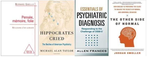 Santé mentale 2013 autres