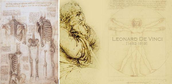 DaVinci Skeleton 1510
