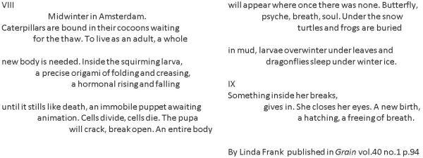 Linda Frank's poem about M.S.Merian