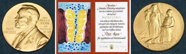 Médaille et Diplome du Prix Nobel de chimie