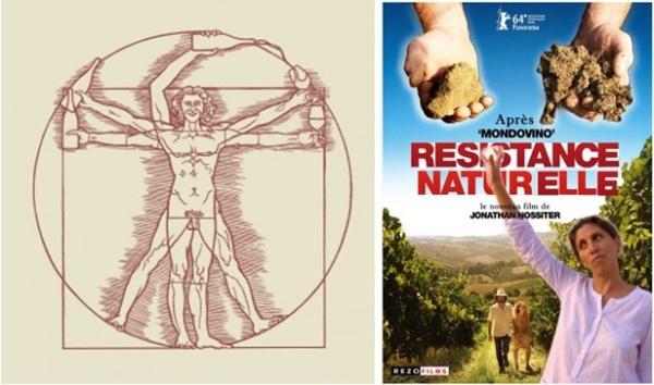 Glougueule Tshirt et Résistance Naturelle