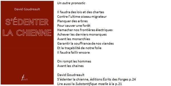 Poème de David Goudreault