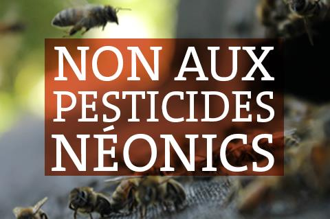 Non aux pesticides neonics