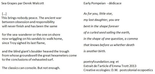 PoemesDerekWalcott
