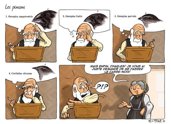 Darwinwebcomics_Michnik
