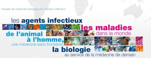 MuseeSciencesBiologiques_Lyon