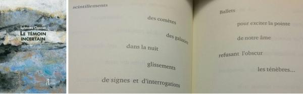 SylvestreClancier_TemoinIncertain_pcp